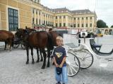 Zamek Schönbrunn